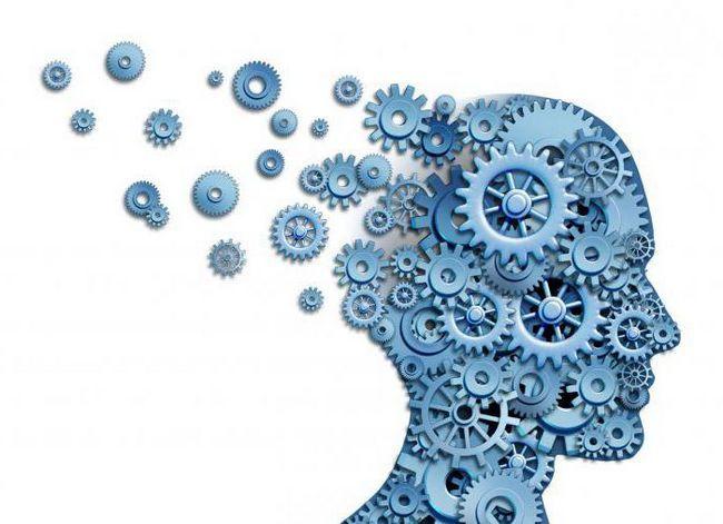 volumul creierului oamenilor vechi