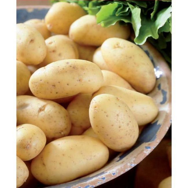 Cartofi Colombo