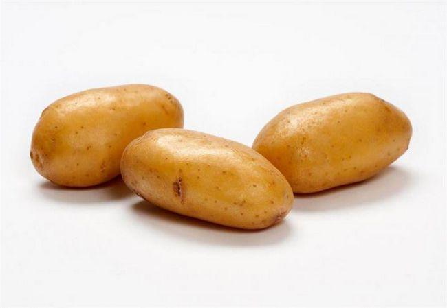 cartofi doamna clerr descriere recenzii de fotografie varietate