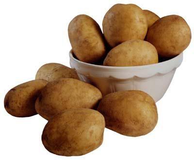 Analiza varietală a cartofului Rocco