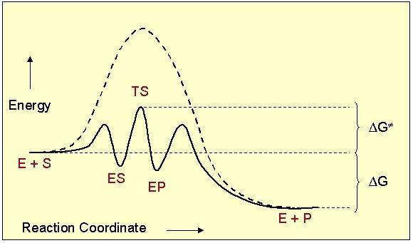 Energia de activare a reacțiilor catalitice