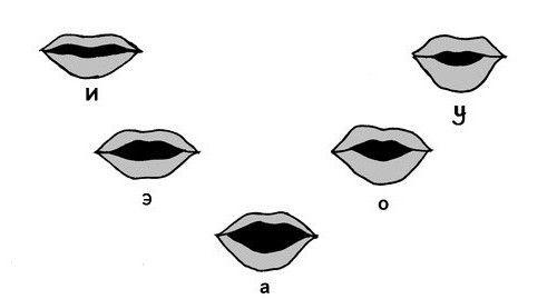 clasificarea vocalelor