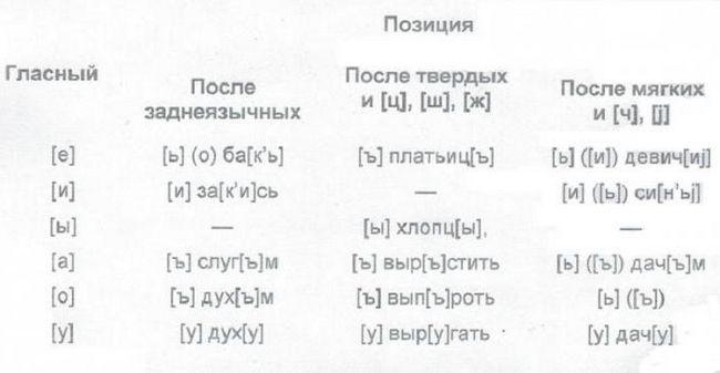 clasificarea vocalelor și consoanelor