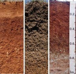 Clasificarea solurilor și proprietățile lor fizice și mecanice