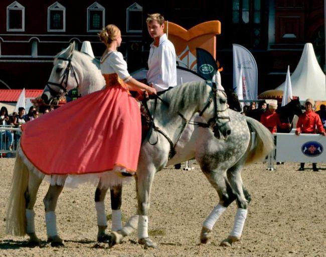 конный манеж на красной площади как пройти