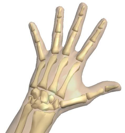 oase de mână umană