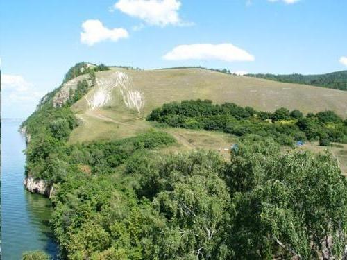 junglă de munte și munte montan