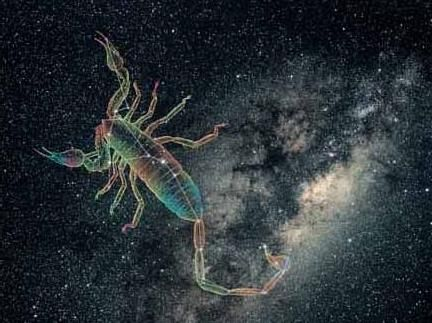 care se potrivește cu scorpionul
