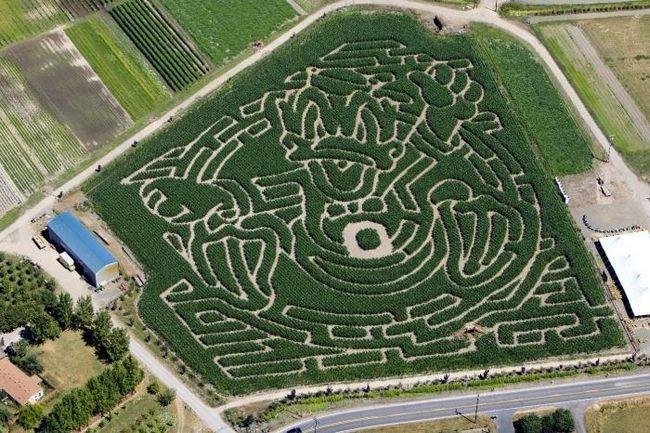 Labirintele pentru copii - un mare stimulent pentru dezvoltare