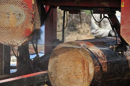 Ferastrau pentru lemn
