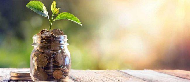 Plan financiar personal: trăsături de compilare, recomandări și exemple