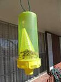 O capcană pentru albine. Informații pentru începătorii apicultorilor