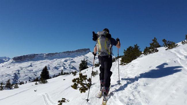 Bocanci de schi: o recenzie, dimensiuni, producători