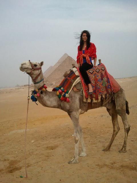 Ce limbă este în Egipt