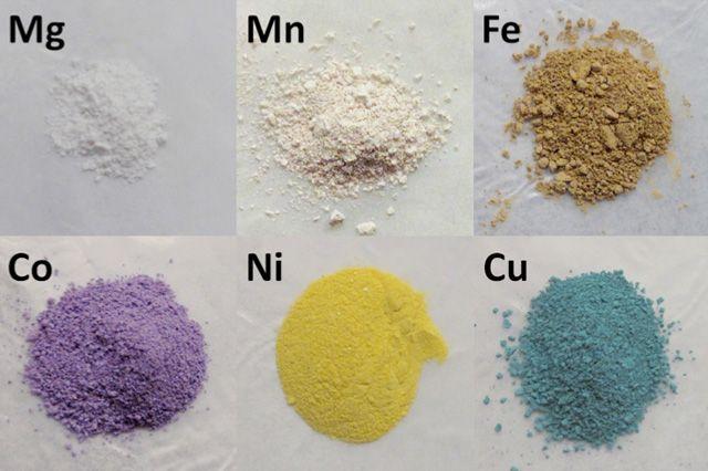 Celule de materie organică și anorganică