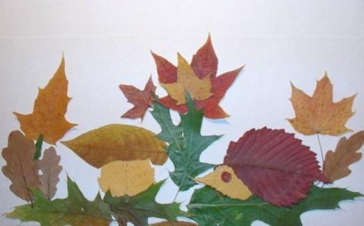 аппликации из природных материалов на тему осень