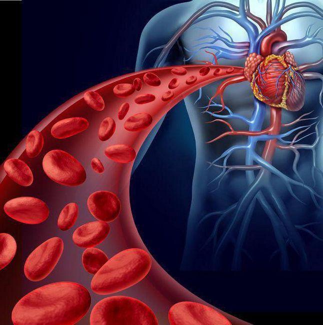 numărul normal de eritrocite la bărbați