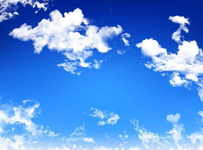 sunt nori