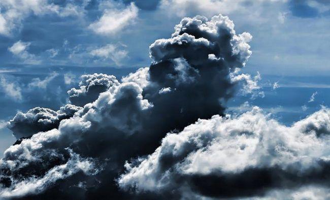 norii trăiesc sau nu sunt natali