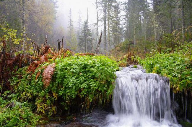 gradul de mineralizare a apei