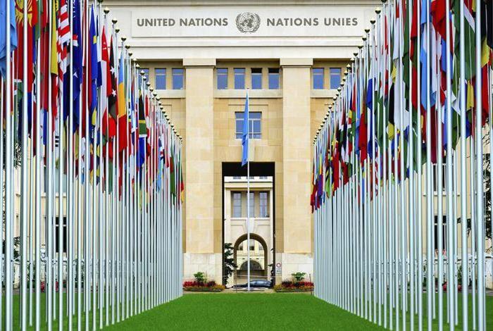 6 limbi oficiale ale ONU