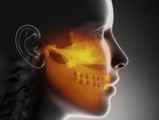 anatomia sinusurilor paranasale