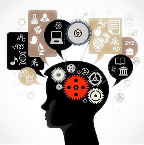 ontogenia în psihologia dezvoltării este