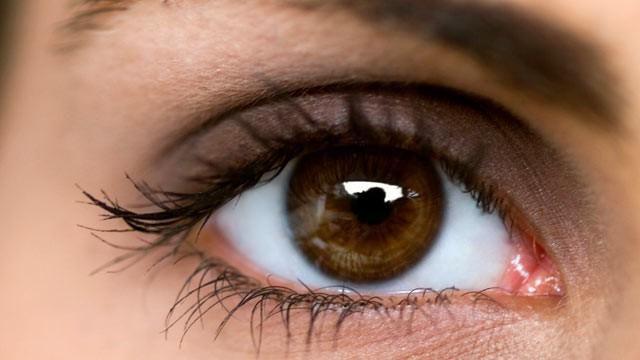 anatomia și fiziologia organului de viziune