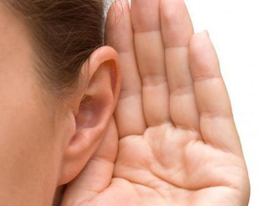 organul de auz și echilibrul se innervă