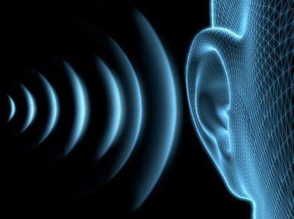 organul de auz și anatomia echilibrului