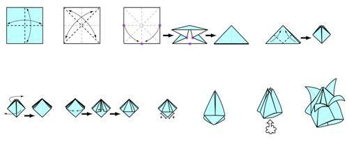 origami tulip model