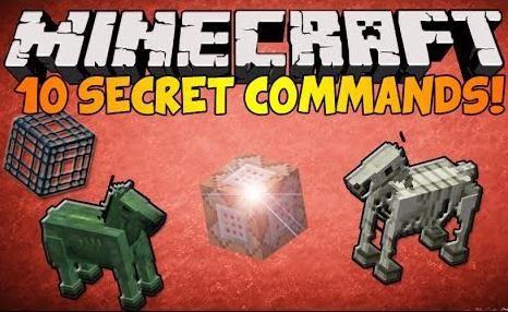 Echipe în Minecraft