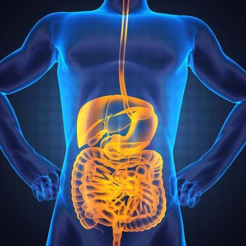 Disfuncție în tractul digestiv