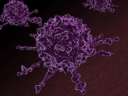 cum este transmis cancerul