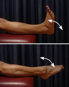 fractura osului metatarsal