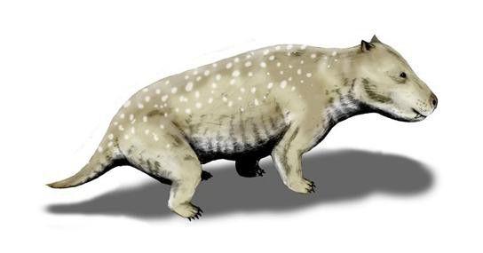 Mezozoic Triassic