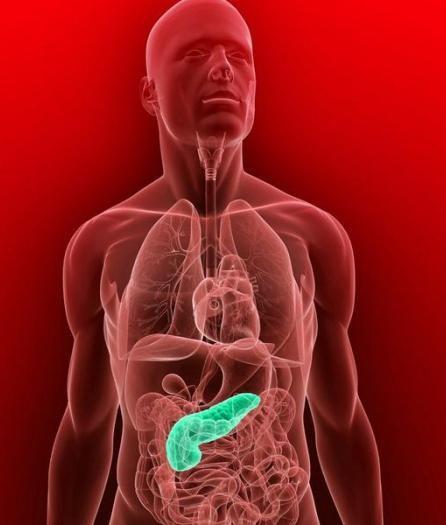 în cazul în care pancreasul este situat într-o fotografie persoană