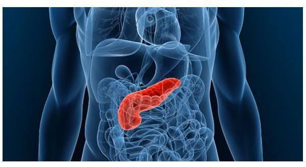 pancreasul produce un hormon