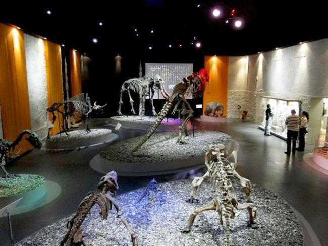 muzee din Perm