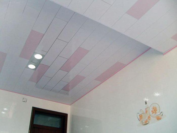 panouri de plastic din plafoane și design