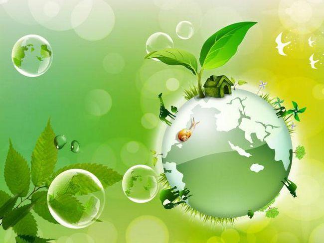 sarcinile ecologiei aplicate