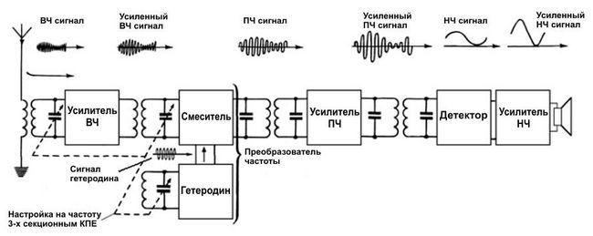 Procesele care apar în receptor