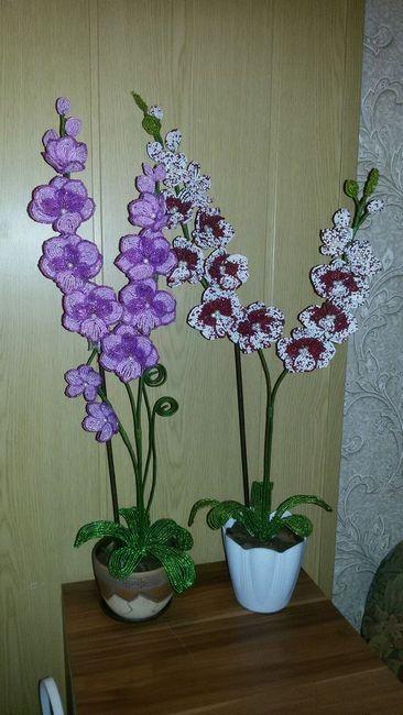 orhidee colorate de margele