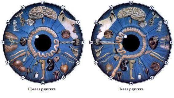 punct pe irisul ochiului