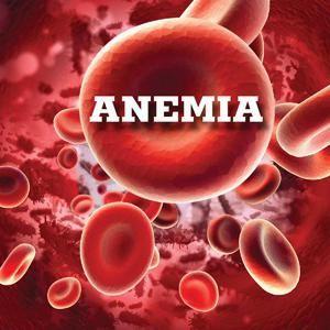rbc test de sânge