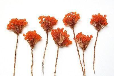 rowanberry schelet de țesut de țesut