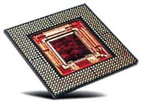 Microprocesorul rus nu este doar o blană valoroasă, ci și ...