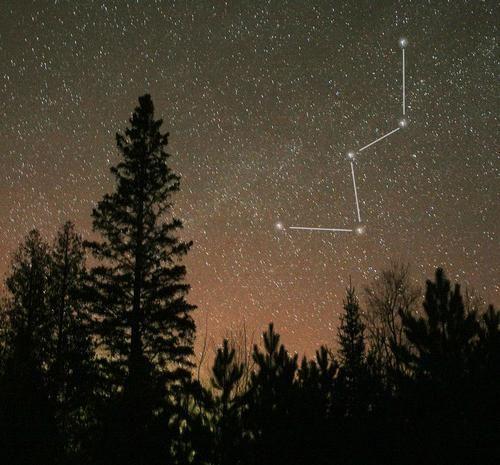 cea mai strălucitoare stea din emisfera nordică