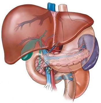 sindromul hipertensiunii portale la copii