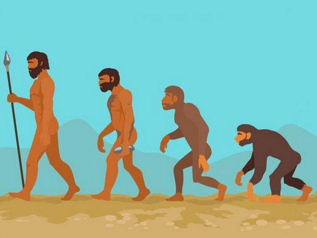 factorii sociali ai antropogenezei